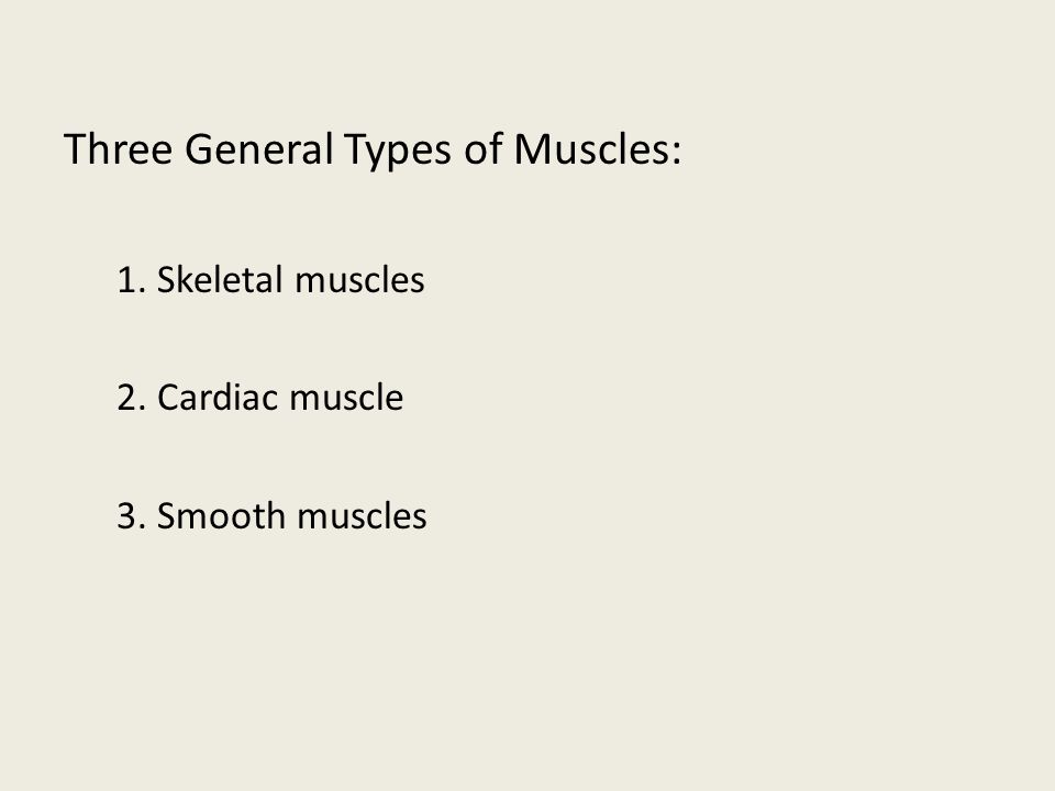 Three General Types of Muscles: