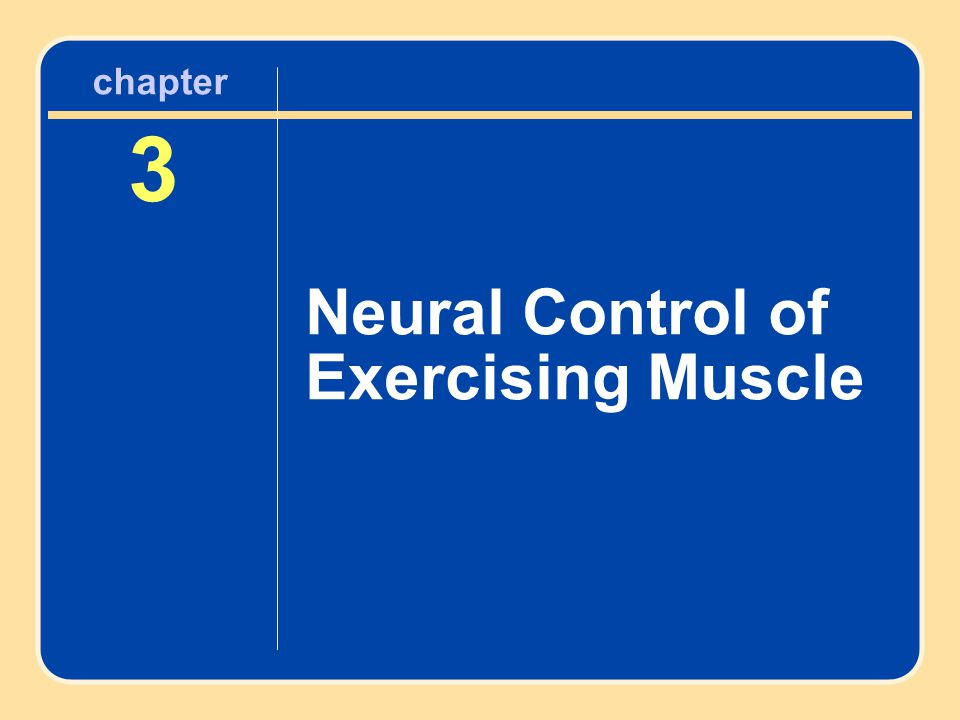 chapter 3 Neural Control of Exercising Muscle