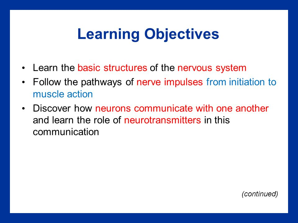 Learning Objectives Learn the basic structures of the nervous system