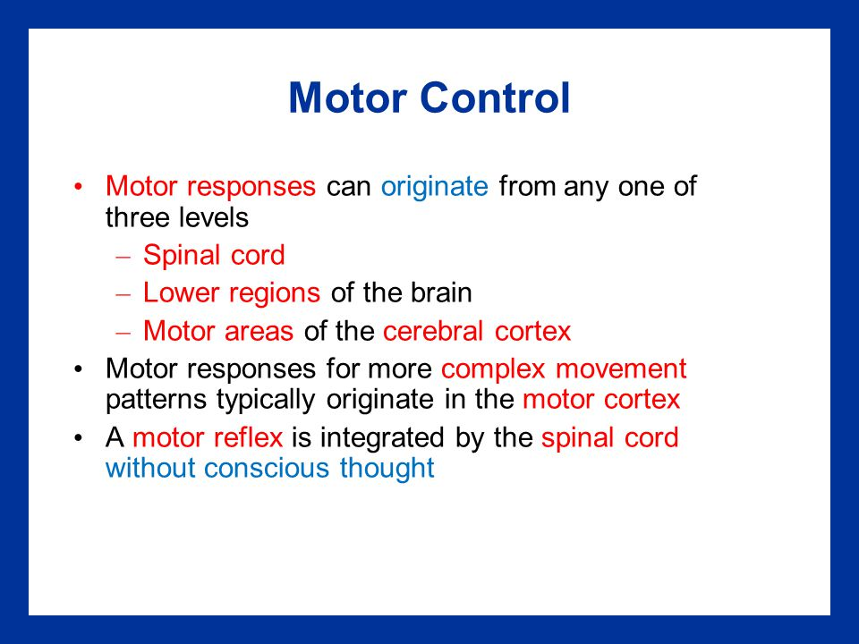 Motor Control Motor responses can originate from any one of three levels. Spinal cord. Lower regions of the brain.