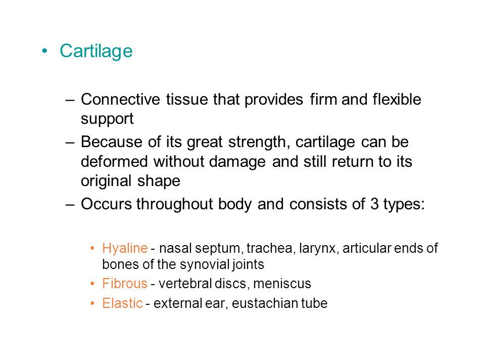 Cartilage Connective tissue that provides firm and flexible support
