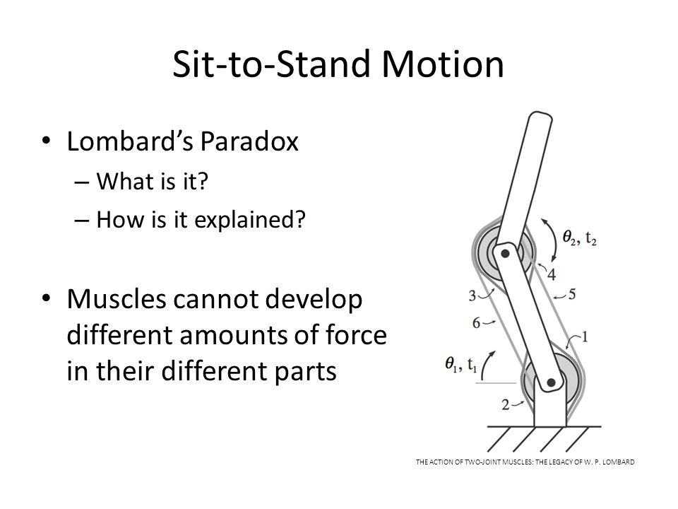 Sit-to-Stand Motion Lombard's Paradox