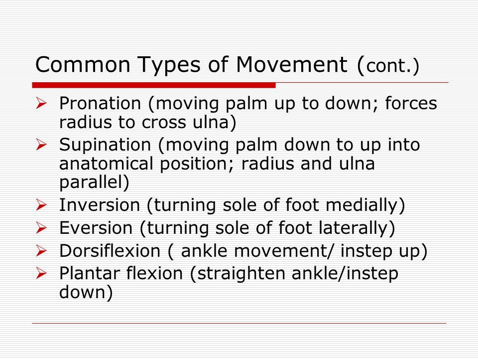 Common Types of Movement (cont.)