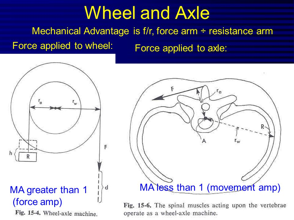Wheel and Axle Mechanical Advantage is f/r, force arm ÷ resistance arm