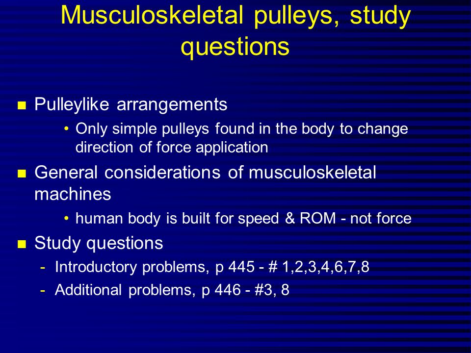 Musculoskeletal pulleys, study questions