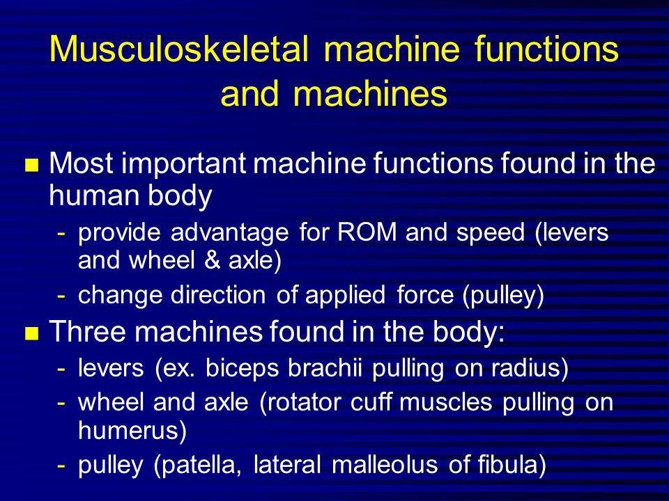 Musculoskeletal machine functions and machines
