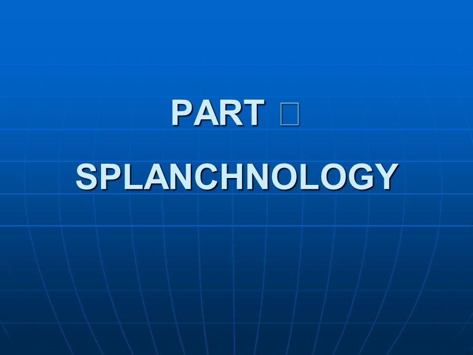 PART Ⅱ SPLANCHNOLOGY