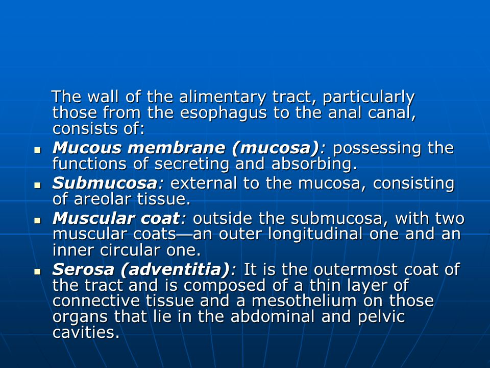 The wall of the alimentary tract, particularly those from the esophagus to the anal canal, consists of: