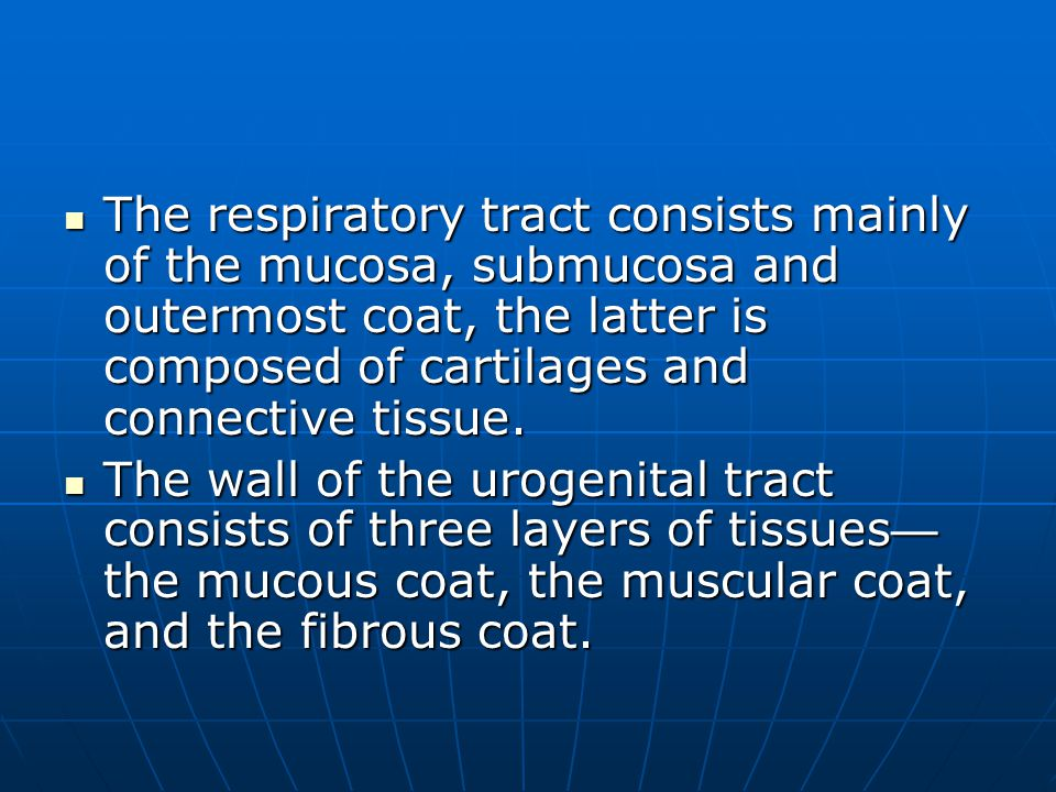 The respiratory tract consists mainly of the mucosa, submucosa and outermost coat, the latter is composed of cartilages and connective tissue.