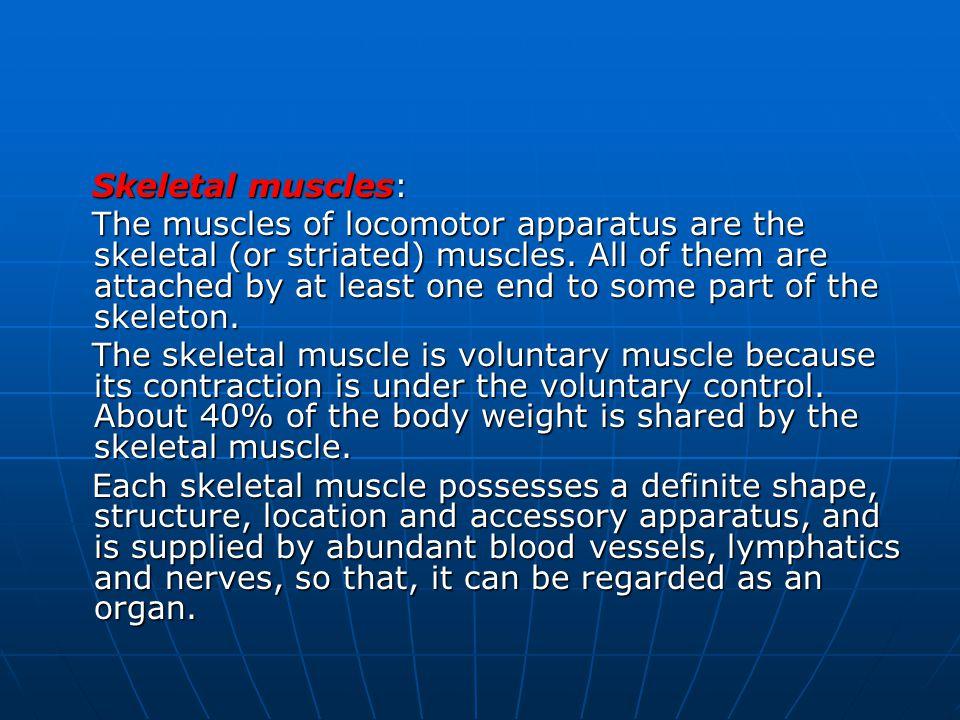 Skeletal muscles: