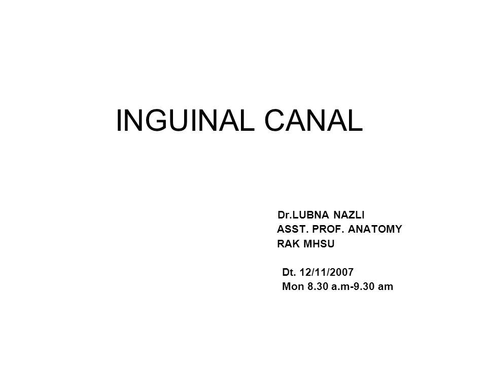 INGUINAL CANAL Dr.LUBNA NAZLI ASST. PROF. ANATOMY RAK MHSU