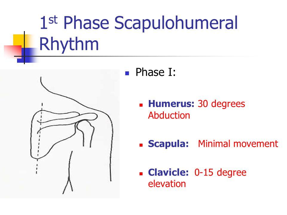 1st Phase Scapulohumeral Rhythm