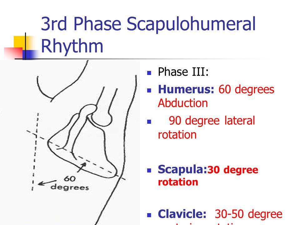 3rd Phase Scapulohumeral Rhythm