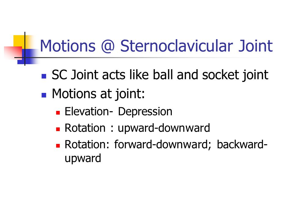 Motions @ Sternoclavicular Joint