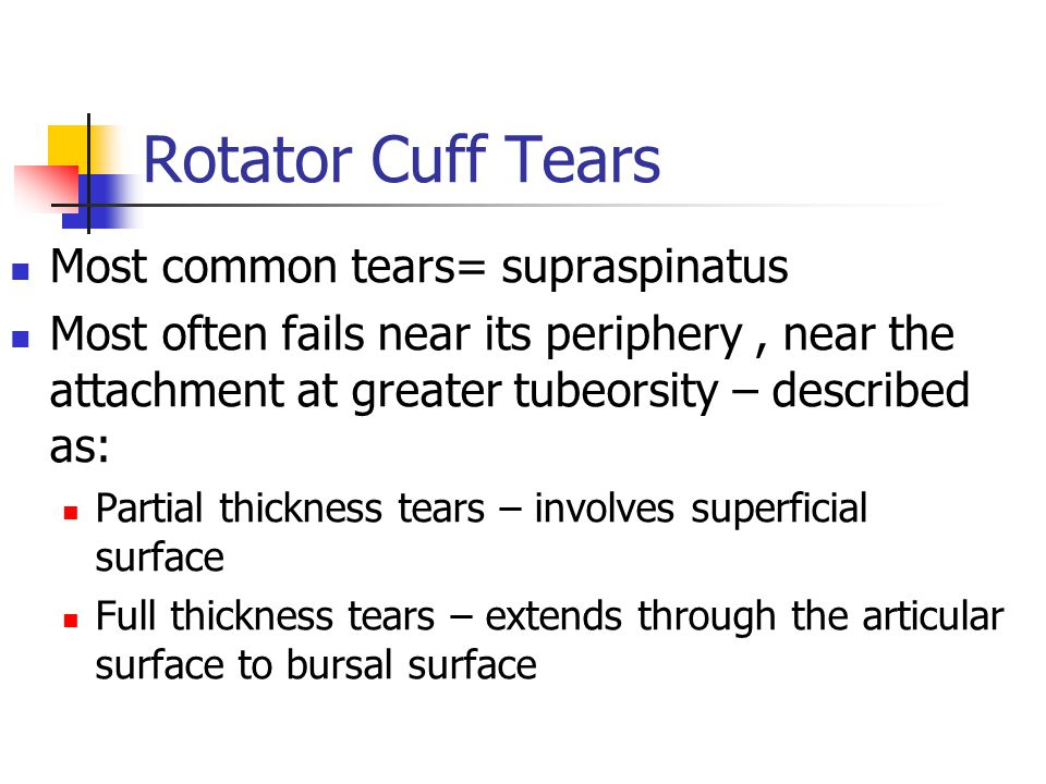 Rotator Cuff Tears Most common tears= supraspinatus