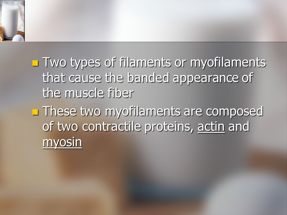 Two types of filaments or myofilaments that cause the banded appearance of the muscle fiber