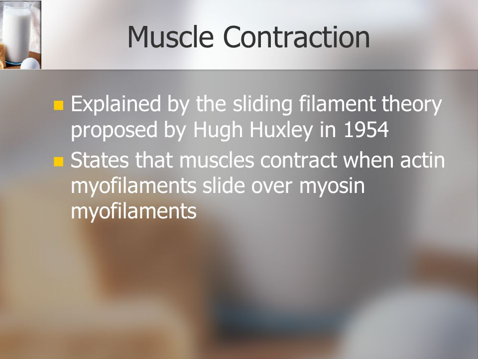 Muscle Contraction Explained by the sliding filament theory proposed by Hugh Huxley in 1954.