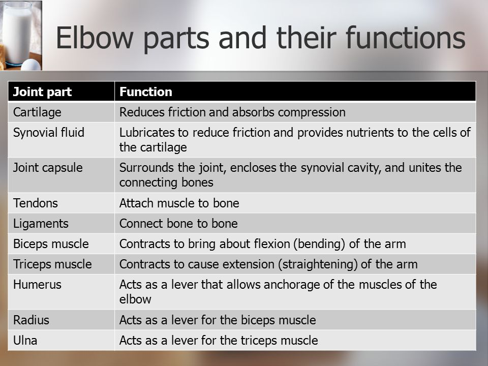 Elbow parts and their functions