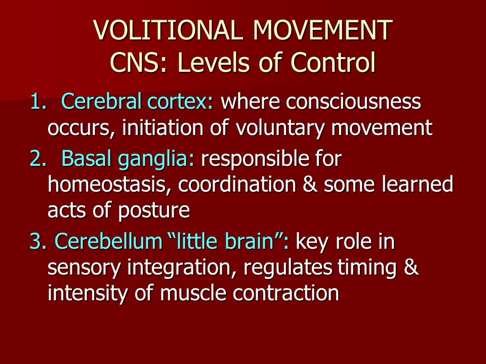 VOLITIONAL MOVEMENT CNS: Levels of Control
