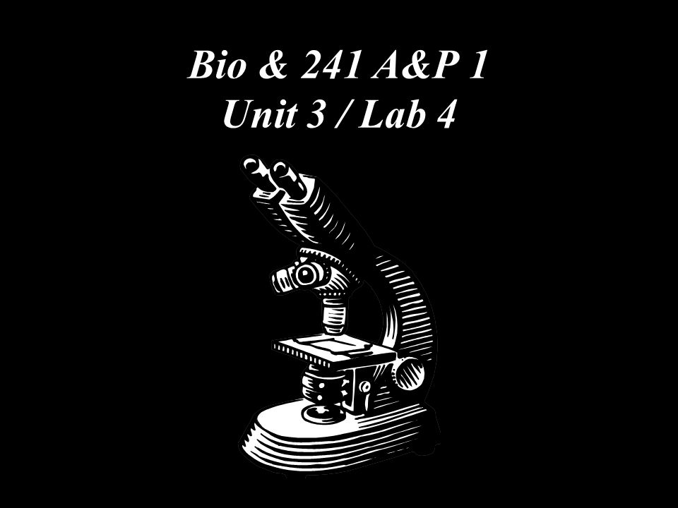Bio & 241 A&P 1 Unit 3 / Lab 4