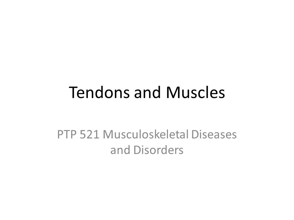 PTP 521 Musculoskeletal Diseases and Disorders