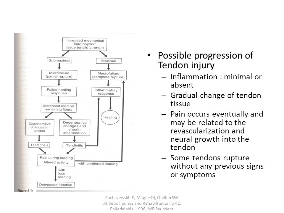 Possible progression of Tendon injury