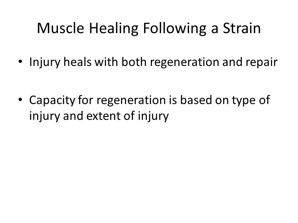 Muscle Healing Following a Strain