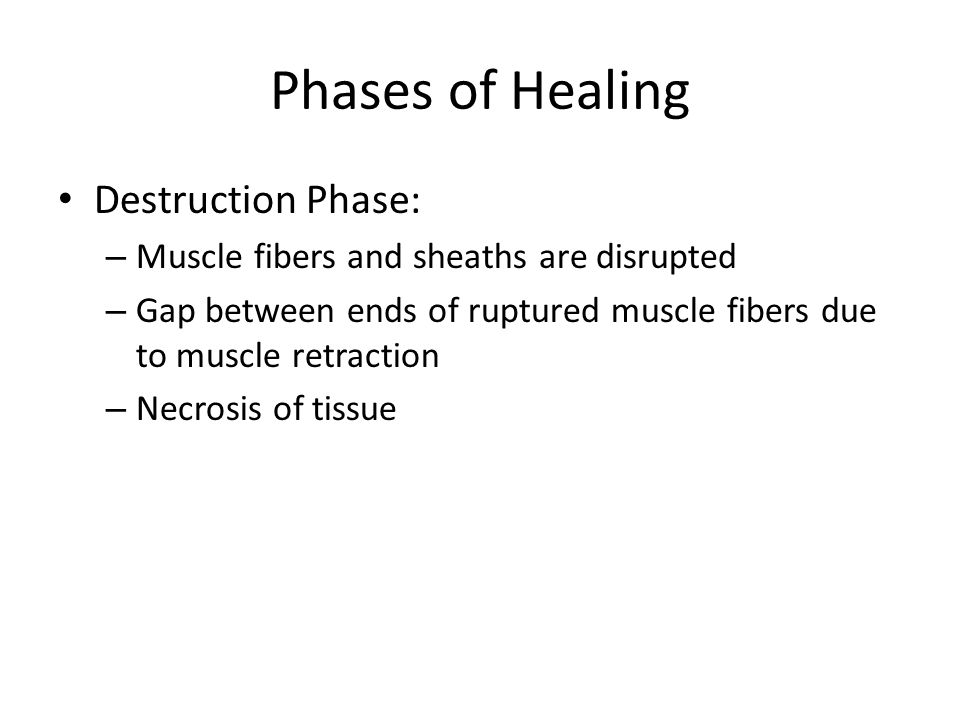Phases of Healing Destruction Phase: