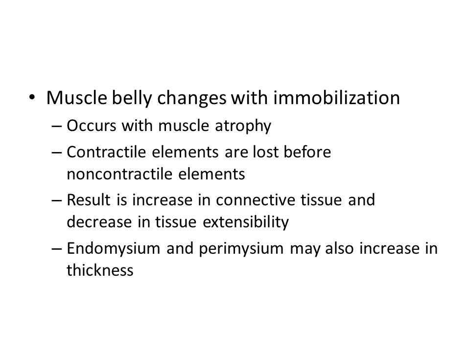 Muscle belly changes with immobilization