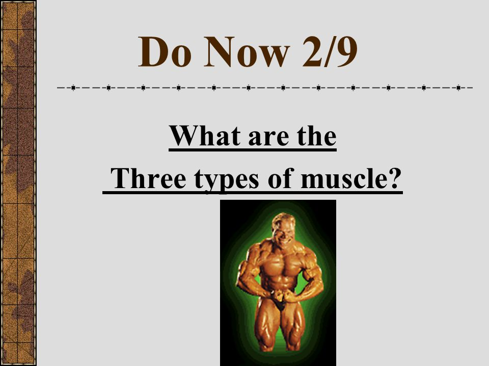 Do Now 2/9 What are the Three types of muscle