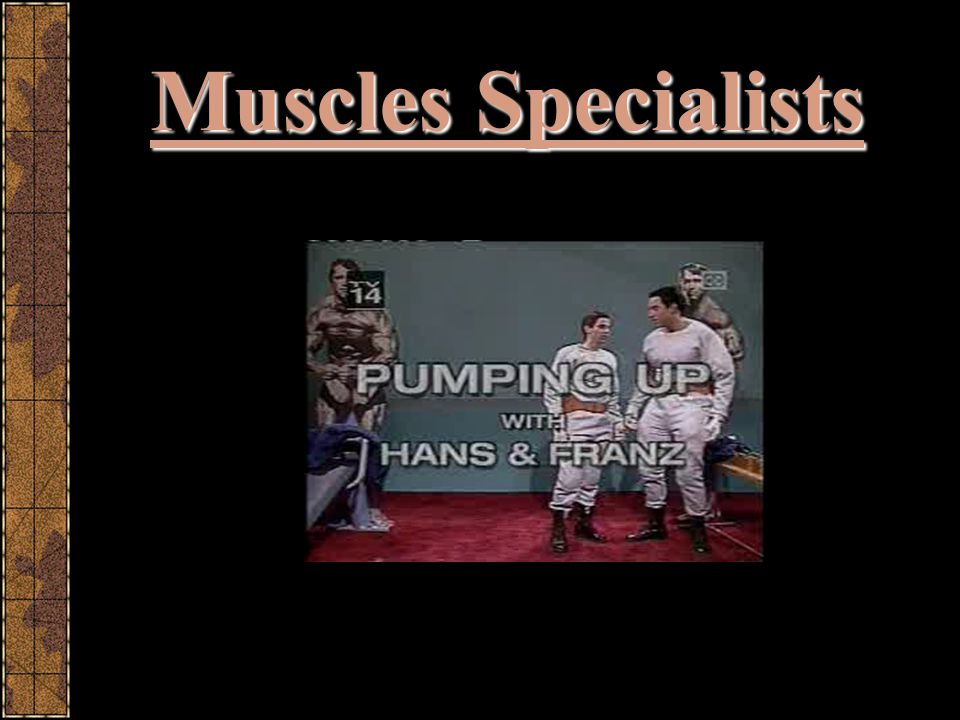 Muscles Specialists