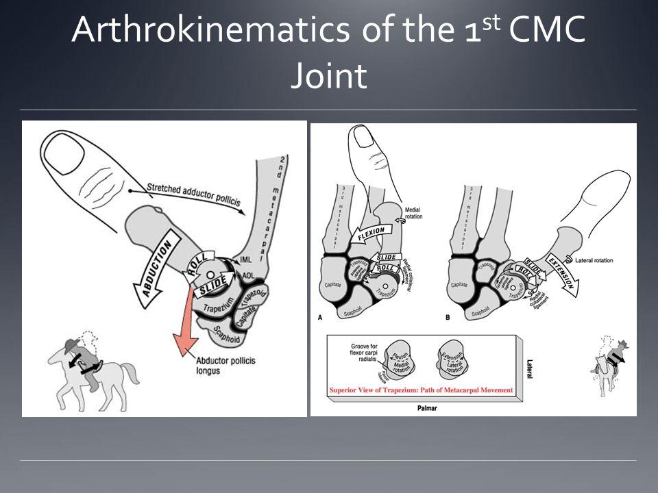 Arthrokinematics of the 1st CMC Joint