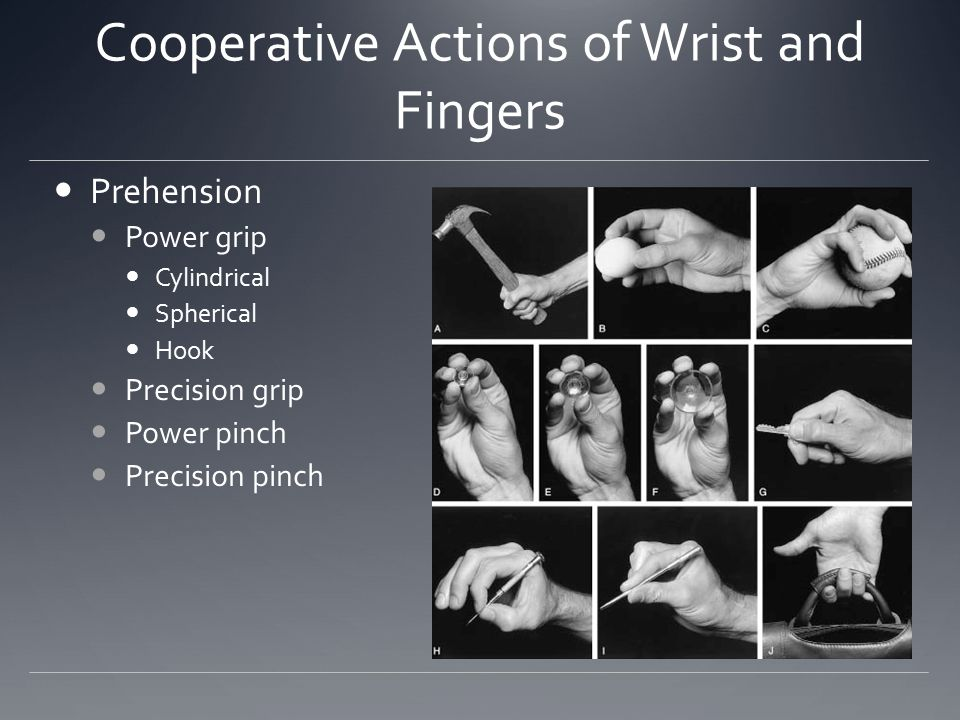 Cooperative Actions Of Wrist And Fingers on 2nd prehension