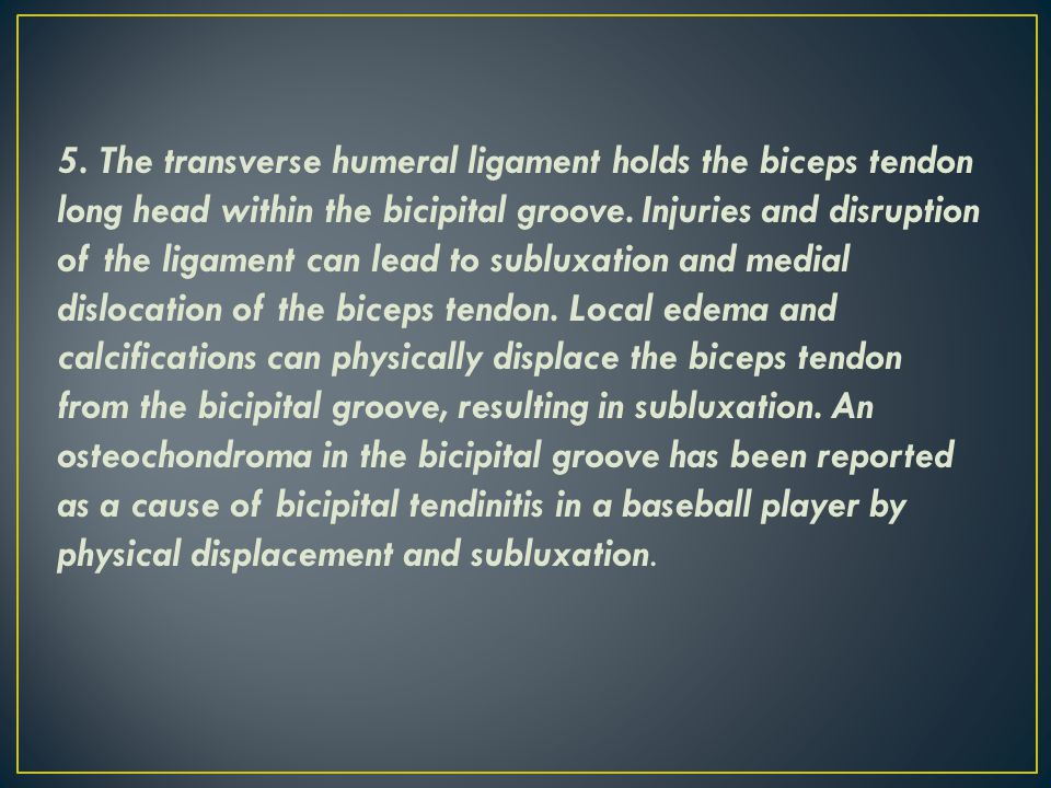 5. The transverse humeral ligament holds the biceps tendon long head within the bicipital groove.