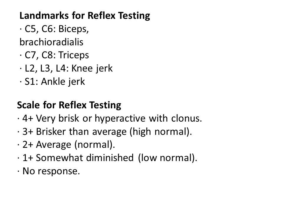 Landmarks for Reflex Testing