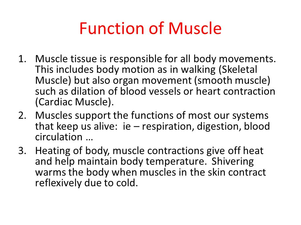 muscle tissue function In this article, we'll go through the structure, function, location, characteristics, diagrams and examples of smooth muscle tissue start learning here.