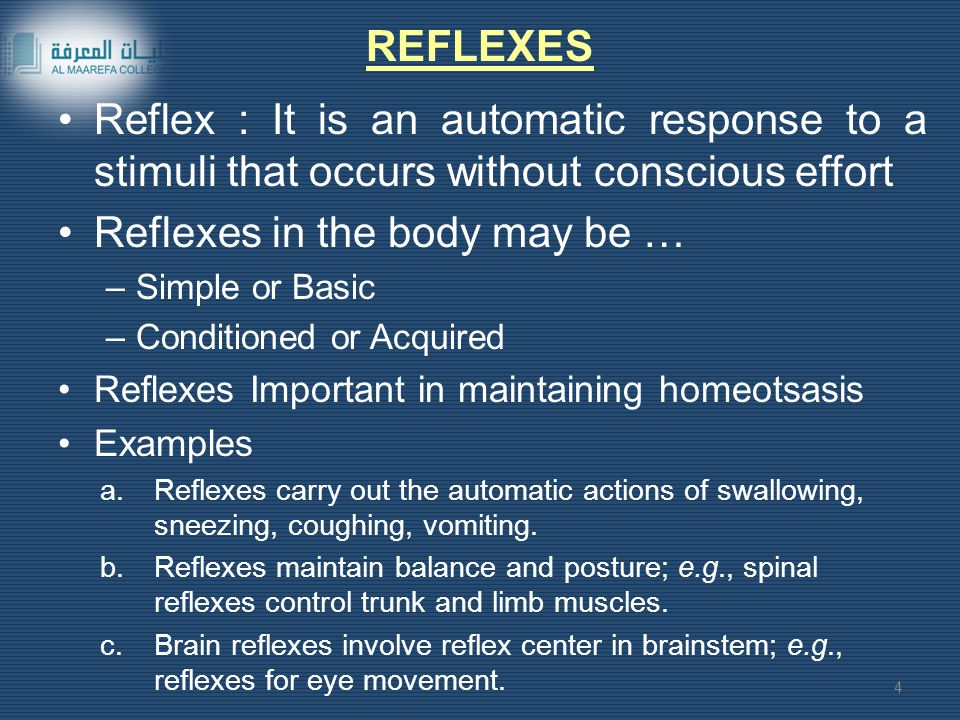 Reflexes in the body may be …