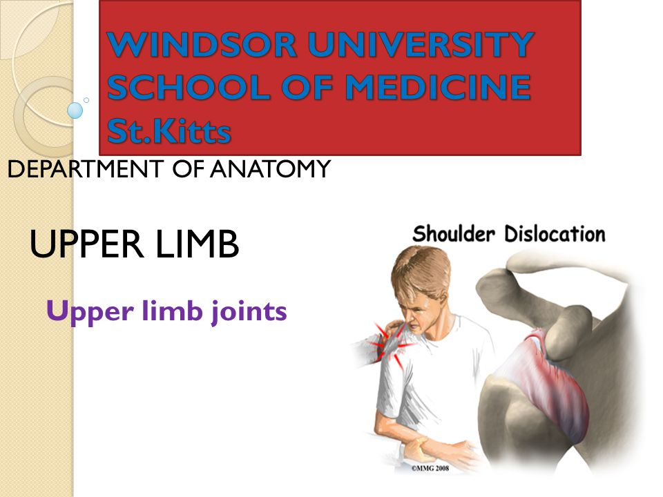 Windsor University School Of Medicine Sttts Ppt Video Online