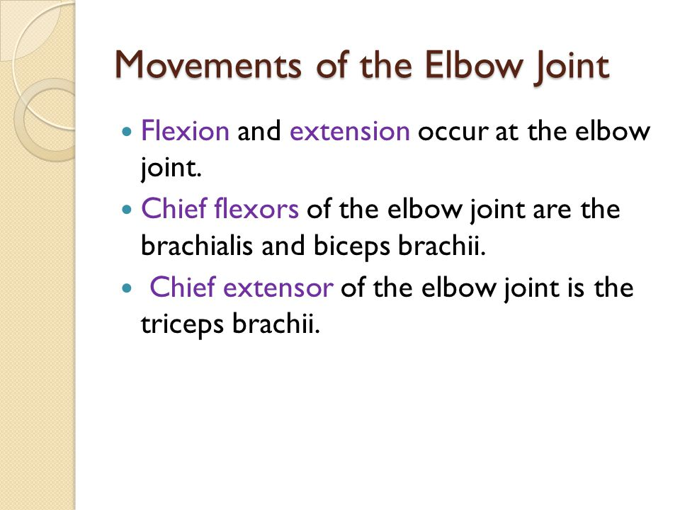 Movements of the Elbow Joint