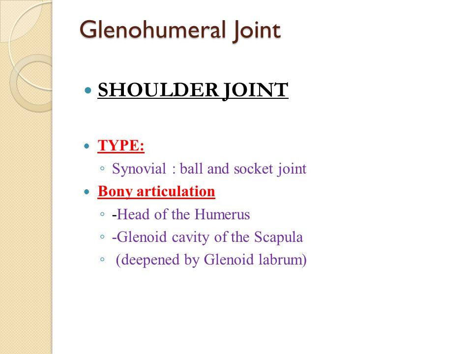 Glenohumeral Joint SHOULDER JOINT TYPE: