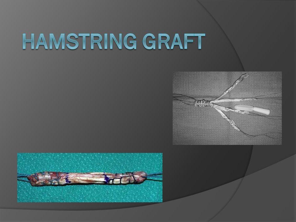 HAMSTRING GRAFT