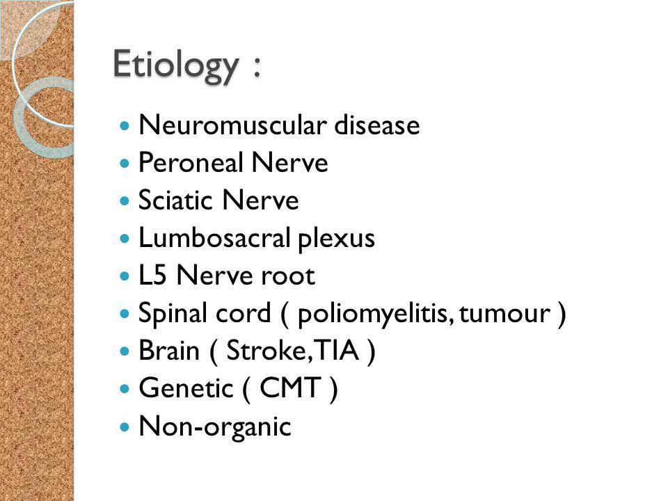 Etiology : Neuromuscular disease Peroneal Nerve Sciatic Nerve