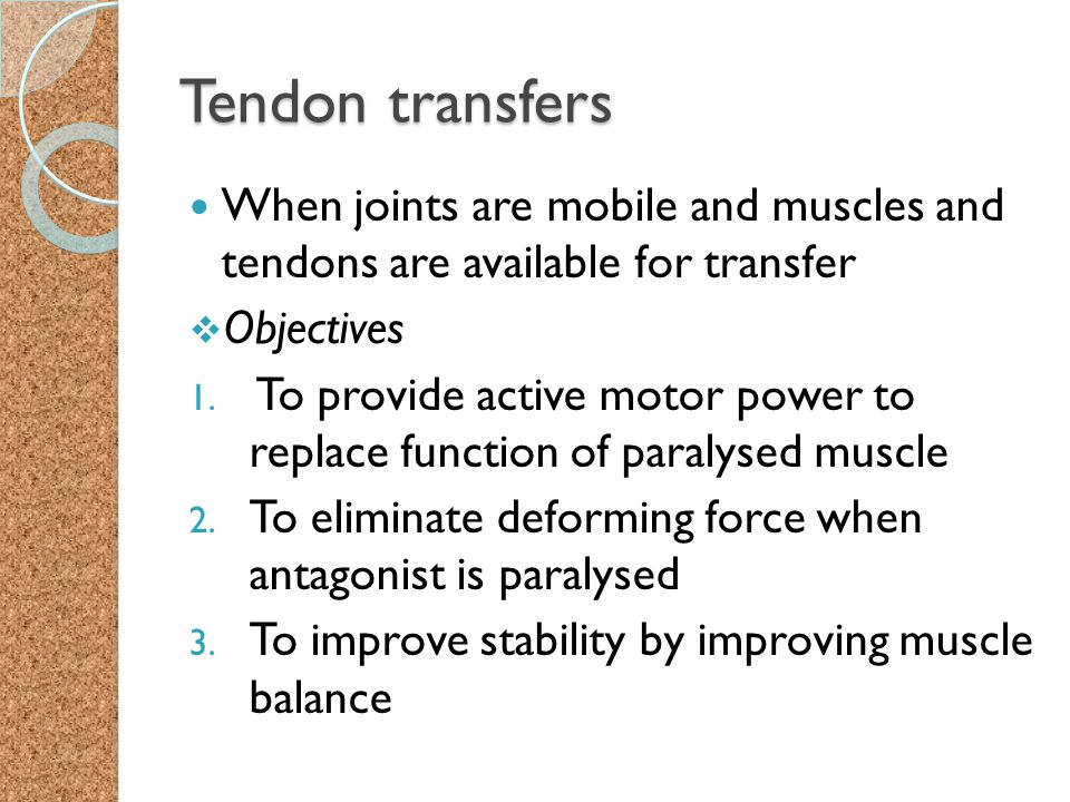 Tendon transfers When joints are mobile and muscles and tendons are available for transfer. Objectives.