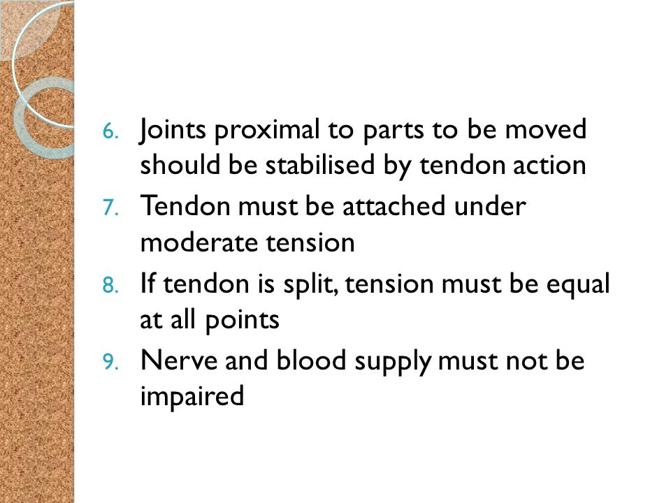 Joints proximal to parts to be moved should be stabilised by tendon action