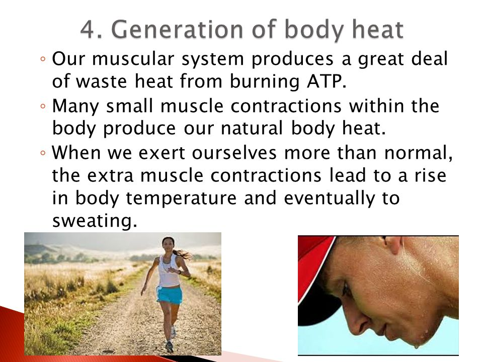 4. Generation of body heat