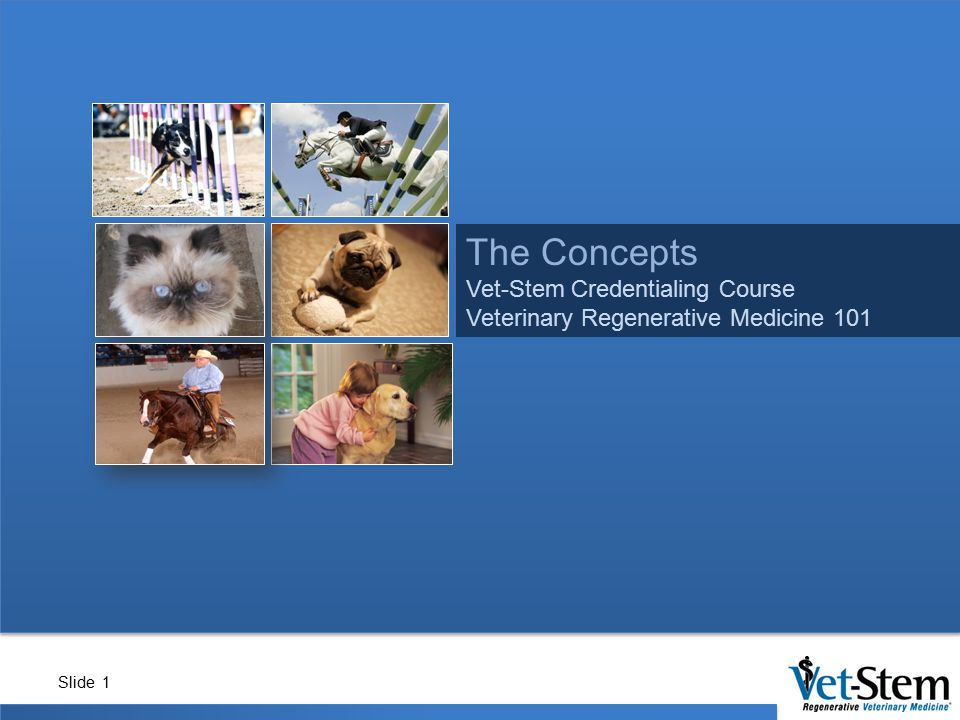 The Concepts Vet-Stem Credentialing Course