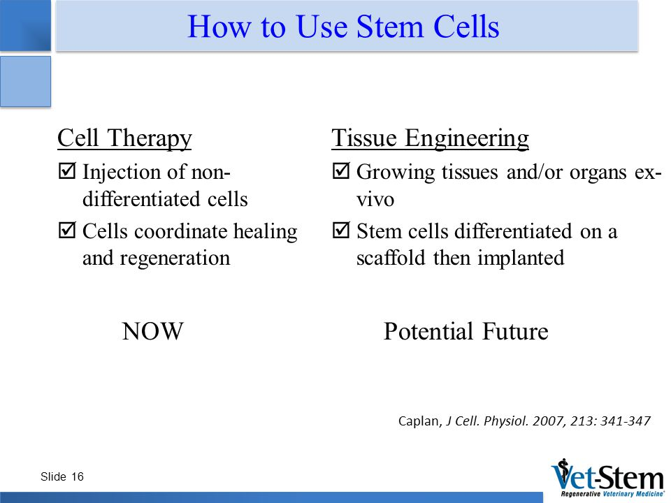 How to Use Stem Cells Cell Therapy NOW Tissue Engineering