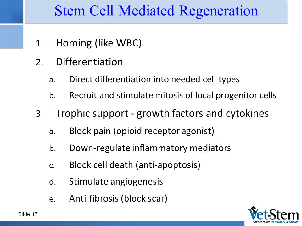 Stem Cell Mediated Regeneration