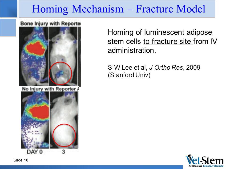 Homing Mechanism – Fracture Model