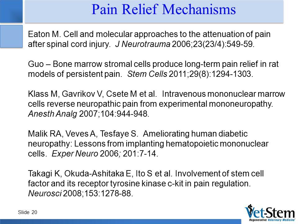 Pain Relief Mechanisms